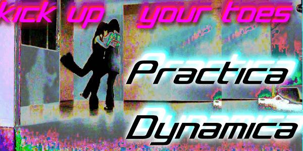 Practica Dynamica